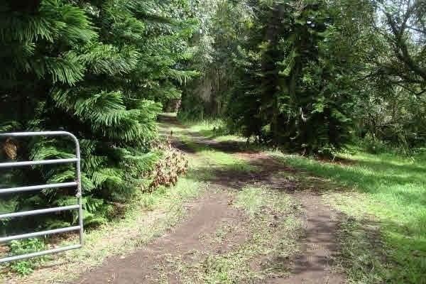 https://bt-photos.global.ssl.fastly.net/hawaii/orig_boomver_1_642776-2.jpg