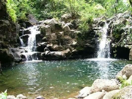https://bt-photos.global.ssl.fastly.net/hawaii/orig_boomver_1_642777-2.jpg