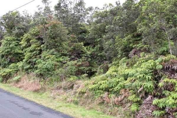 Address Not Published, Volcano, HI 96785 (MLS #642803) :: Hawai'i Life