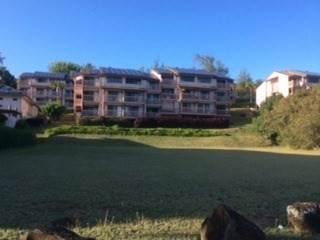 3411 Wilcox Rd, Lihue, HI 96766 (MLS #642982) :: Corcoran Pacific Properties
