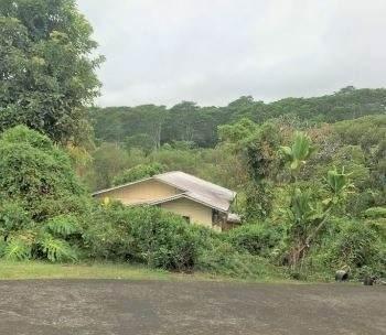 2391 Piihonua Rd, Hilo, HI 96720 (MLS #643013) :: LUVA Real Estate