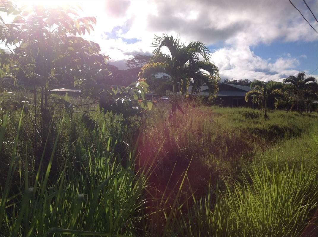 https://bt-photos.global.ssl.fastly.net/hawaii/orig_boomver_1_643027-2.jpg