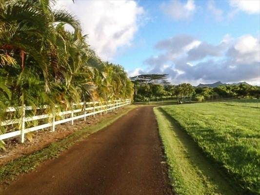 Kapuna Road, Kilauea, HI 96746 (MLS #643663) :: Kauai Exclusive Realty