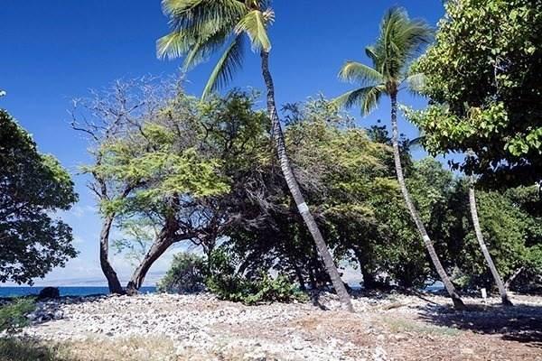 https://bt-photos.global.ssl.fastly.net/hawaii/orig_boomver_1_643909-2.jpg
