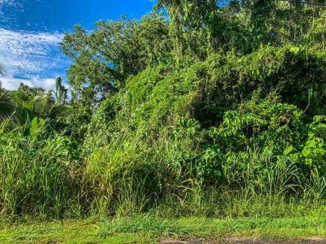 12-7008 Kaihulali St, Pahoa, HI 96778 (MLS #643915) :: Iokua Real Estate, Inc.