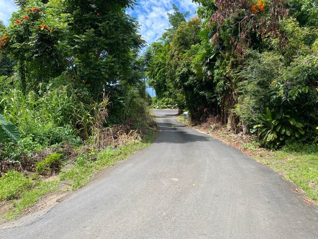 83-5404 Hawaii Belt Road - Photo 1