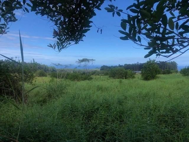 Address Not Published, Pepeekeo, HI 96783 (MLS #644005) :: Corcoran Pacific Properties