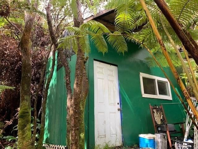 53-B-464 Nahelenani, Volcano, HI 96785 (MLS #644137) :: Hawai'i Life