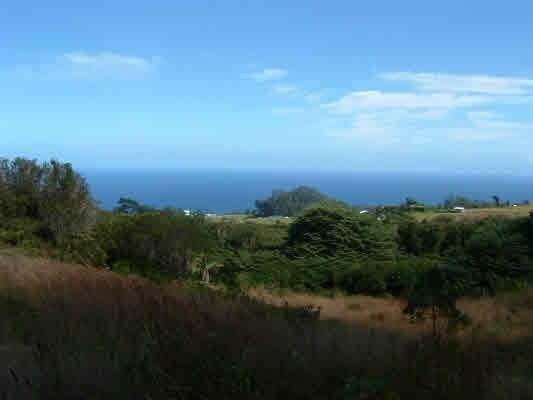 32-418 Piha Kahuku, Ninole, HI 96773 (MLS #644162) :: Corcoran Pacific Properties