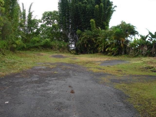 Kaumana Drive, Hilo, HI 96720 (MLS #644341) :: Hawai'i Life