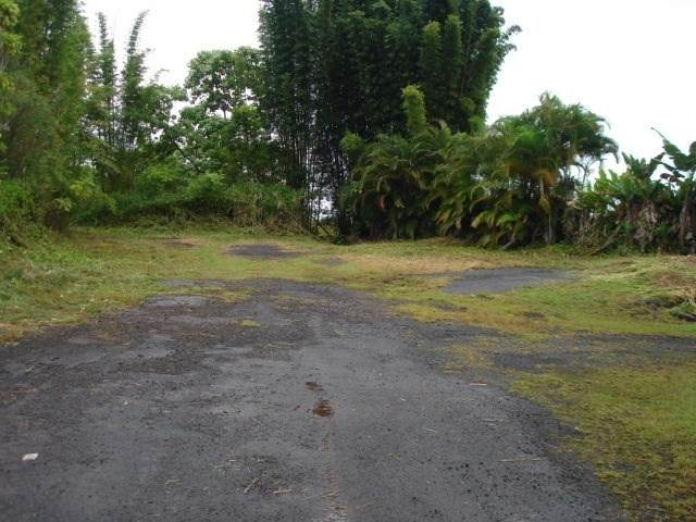 Kaumana Drive, Hilo, HI 96720 (MLS #644341) :: Iokua Real Estate, Inc.