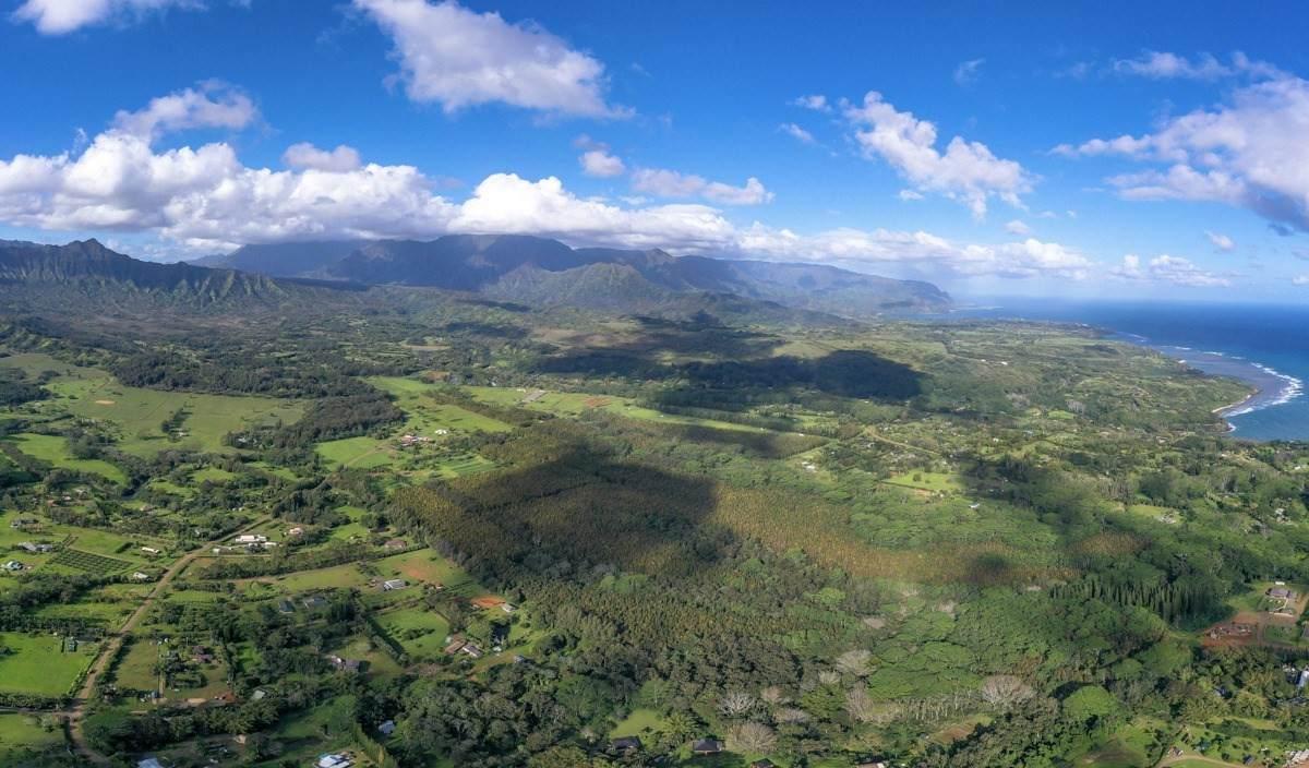 https://bt-photos.global.ssl.fastly.net/hawaii/orig_boomver_1_644354-2.jpg