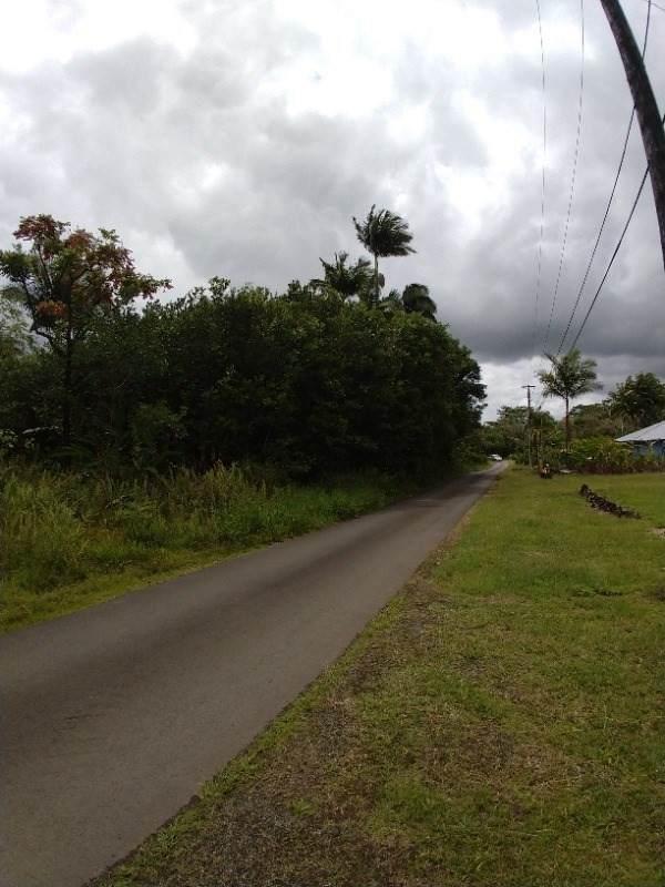 Address Not Published, Hilo, HI 96720 (MLS #644567) :: Corcoran Pacific Properties