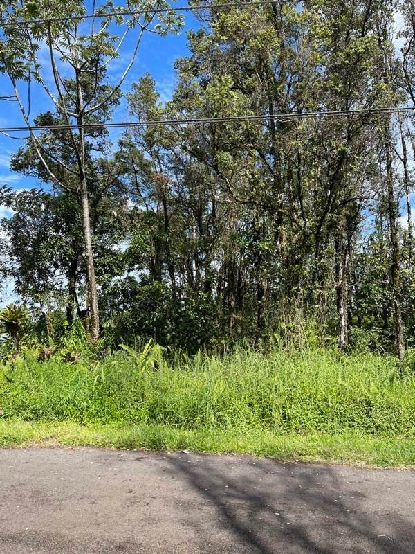 Silveroak Dr, Pahoa, HI 96778 (MLS #644738) :: Corcoran Pacific Properties