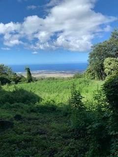 Address Not Published, Kailua-Kona, HI 96740 (MLS #644800) :: Aloha Kona Realty, Inc.