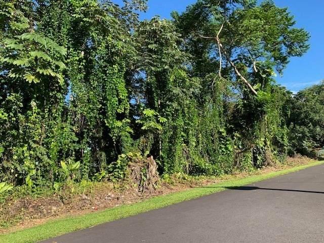 N Lot 3 Opae St, Pahoa, HI 96778 (MLS #645098) :: Aloha Kona Realty, Inc.