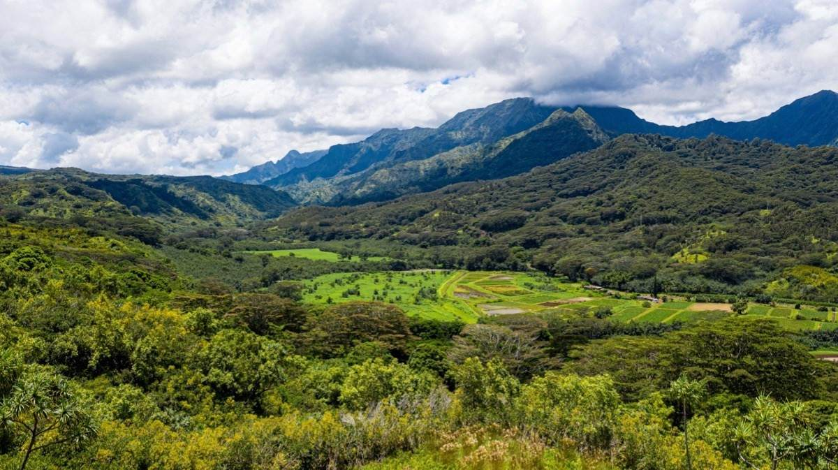 https://bt-photos.global.ssl.fastly.net/hawaii/orig_boomver_1_645139-2.jpg