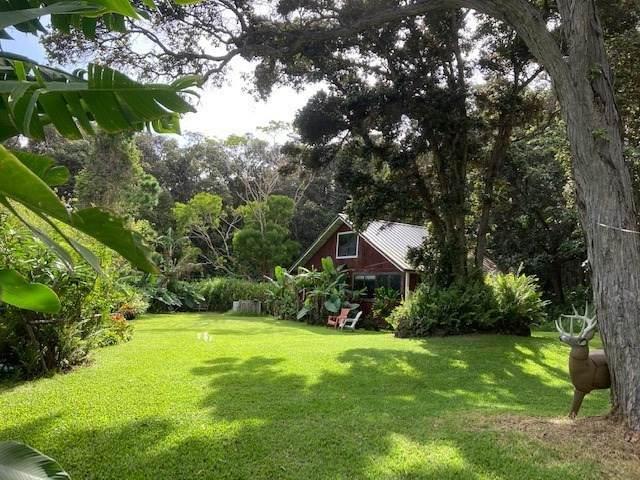 94-2690 Lorenzo Rd, Naalehu, HI 96772 (MLS #645474) :: Aloha Kona Realty, Inc.