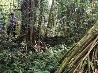 https://bt-photos.global.ssl.fastly.net/hawaii/orig_boomver_1_645495-2.jpg