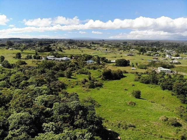Waikahe Road, Hilo, HI 96720 (MLS #645720) :: Steven Moody