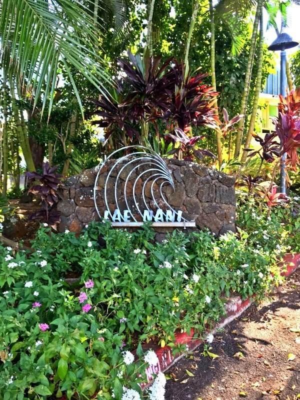 410 Papaloa Rd, Kapaa, HI 96746 (MLS #645895) :: Corcoran Pacific Properties