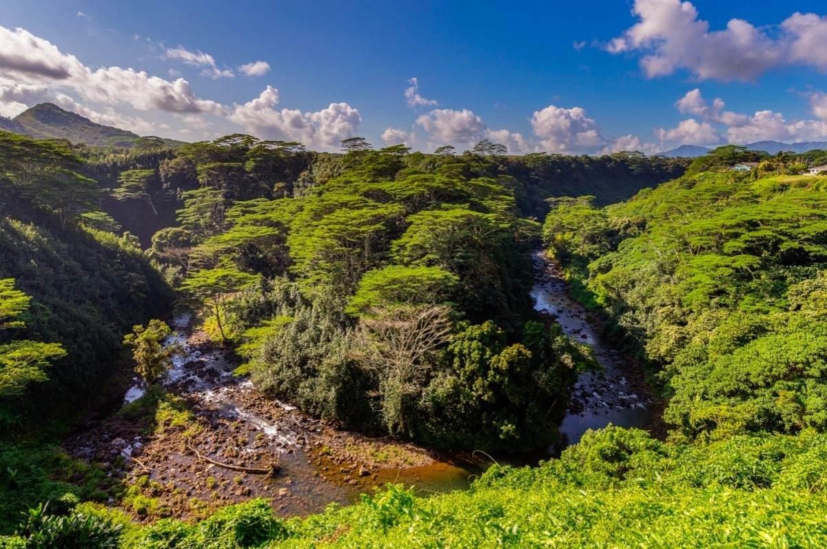 https://bt-photos.global.ssl.fastly.net/hawaii/orig_boomver_1_645912-2.jpg