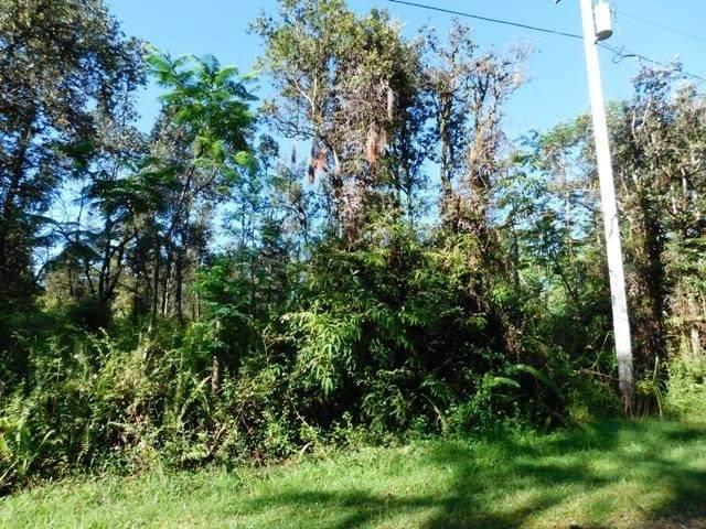 Shell Rd, Pahoa, HI 96778 (MLS #646069) :: Steven Moody