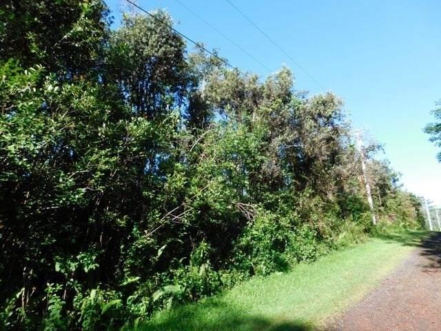 Shell Rd, Pahoa, HI 96778 (MLS #646071) :: Steven Moody