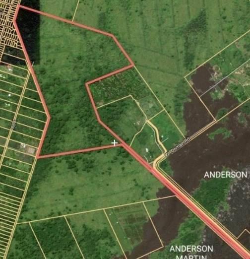 Lava Tree Rd, Pahoa, HI 96778 (MLS #646142) :: Corcoran Pacific Properties