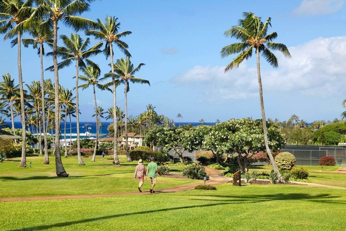 https://bt-photos.global.ssl.fastly.net/hawaii/orig_boomver_1_646424-2.jpg