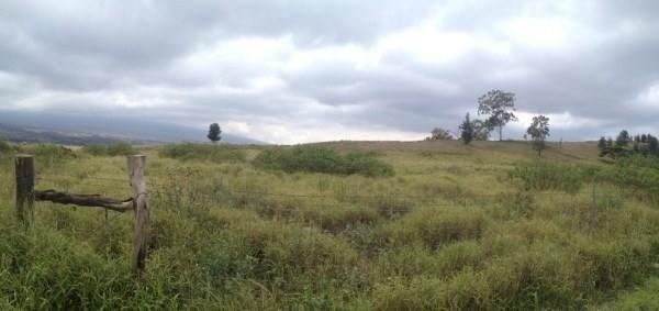 71-1580 Mamalahoa Hwy, Kailua-Kona, HI 96740 (MLS #646464) :: Corcoran Pacific Properties