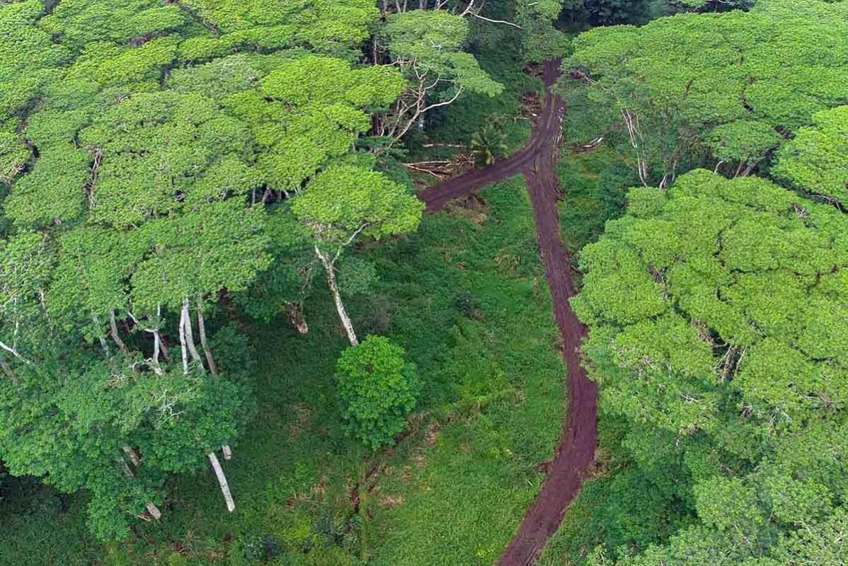 https://bt-photos.global.ssl.fastly.net/hawaii/orig_boomver_1_646681-2.jpg