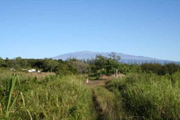 17-4658 Huina Rd, Kurtistown, HI 96760 (MLS #647050) :: Corcoran Pacific Properties