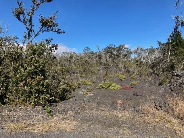 92-9266 Reef Pkwy, Ocean View, HI 96737 (MLS #647486) :: LUVA Real Estate