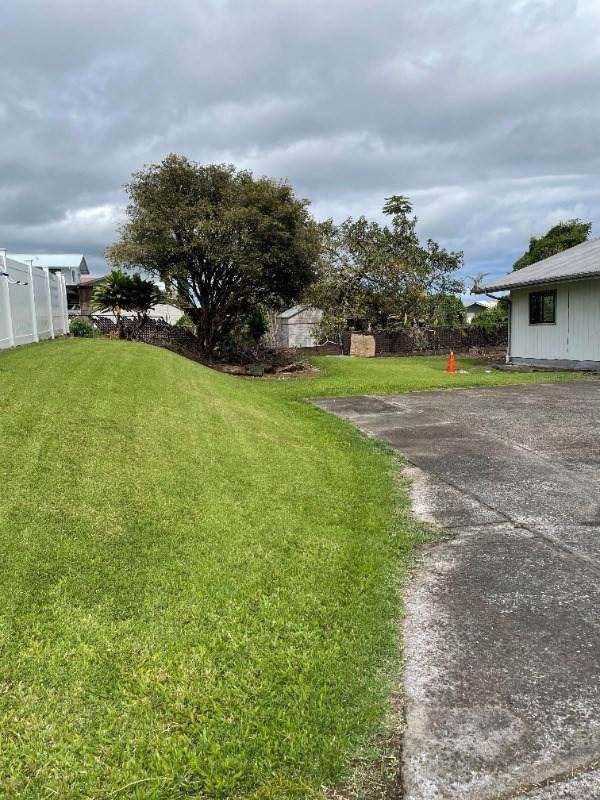 56 Hoolauae St, Hilo, HI 96720 (MLS #647498) :: Hawai'i Life