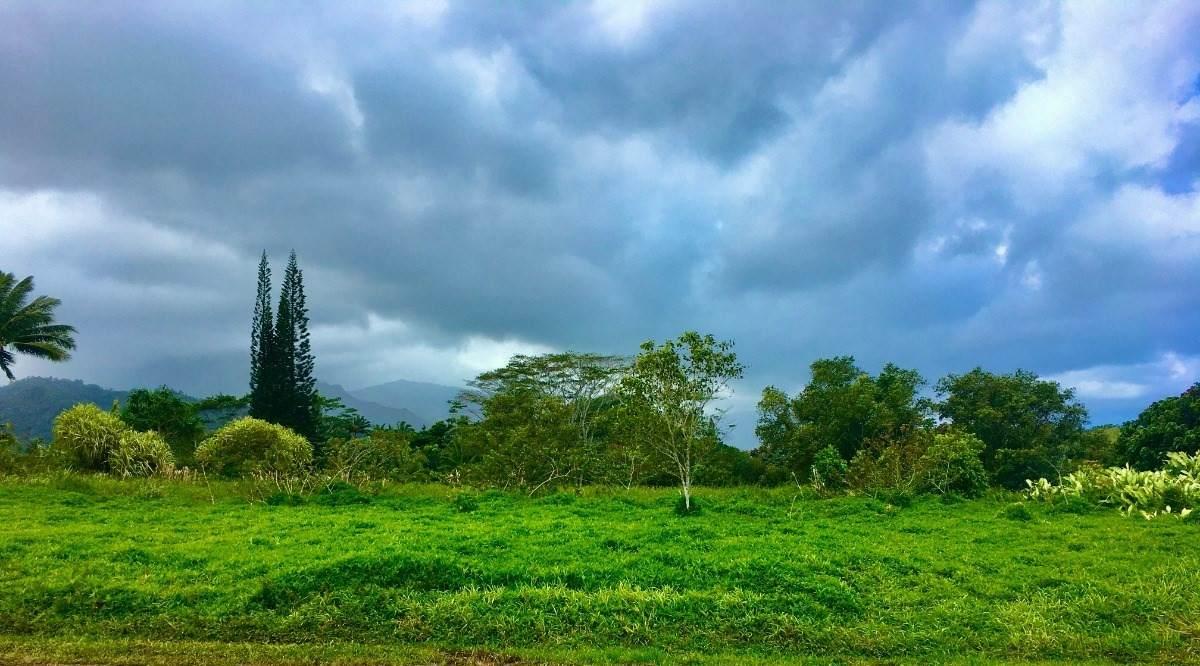 https://bt-photos.global.ssl.fastly.net/hawaii/orig_boomver_1_647561-2.jpg