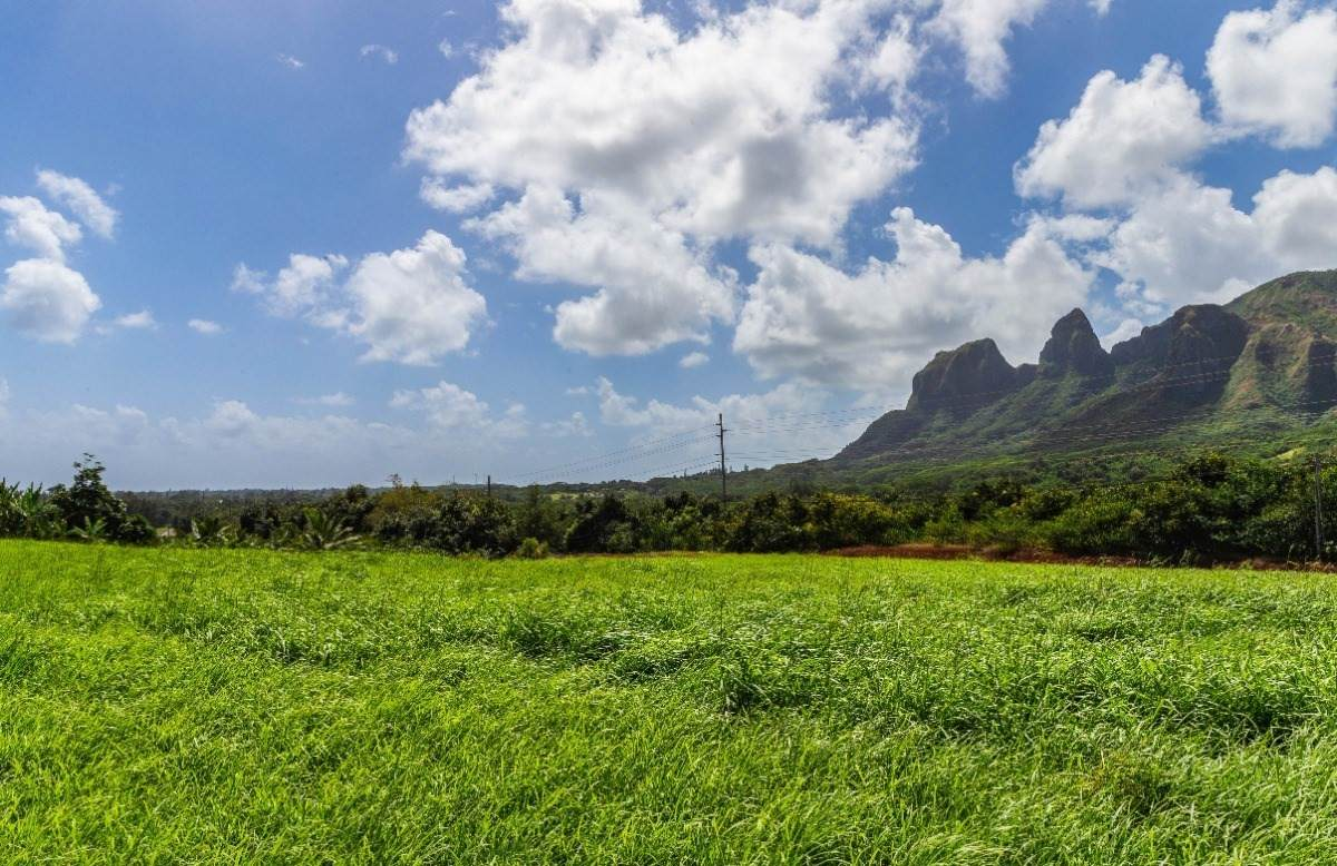 https://bt-photos.global.ssl.fastly.net/hawaii/orig_boomver_1_647588-2.jpg