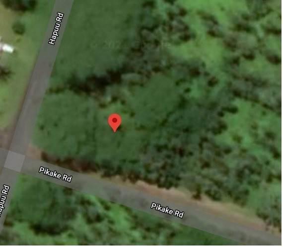 Pikake Rd, Pahoa, HI 96778 (MLS #647761) :: Iokua Real Estate, Inc.