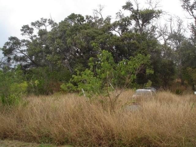 Luau Dr, Ocean View, HI 96737 (MLS #647775) :: LUVA Real Estate