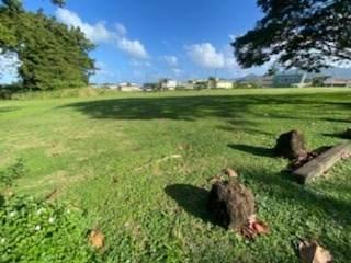 3 Kaumualii Highway, Lihue, HI 96766 (MLS #647789) :: Kauai Exclusive Realty