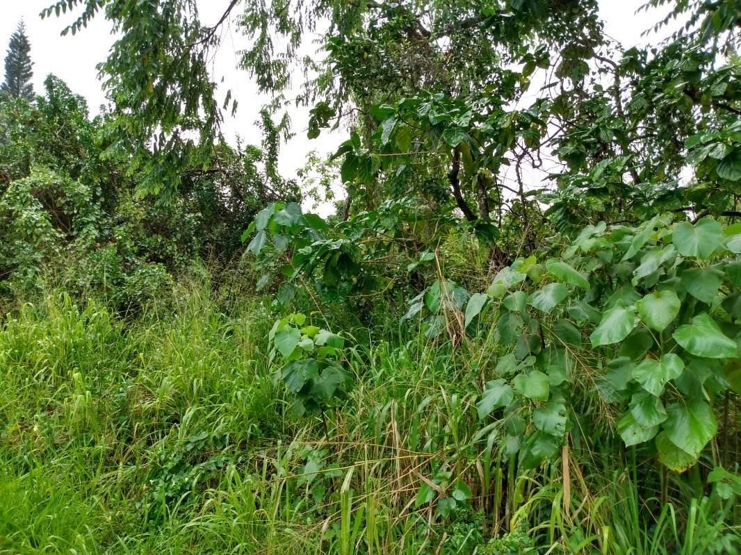 12-283 Pohakupele Lp - Photo 1