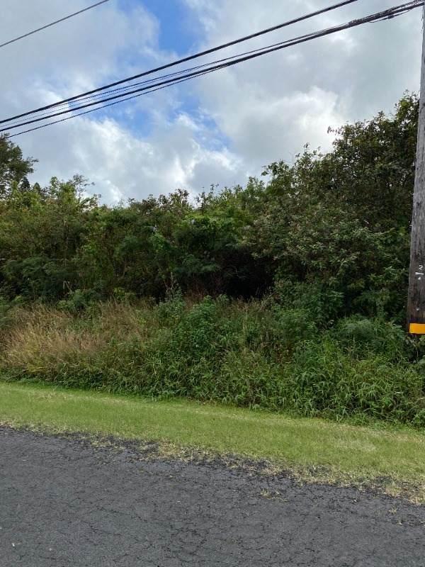 Address Not Published, Naalehu, HI 96772 (MLS #648402) :: Steven Moody