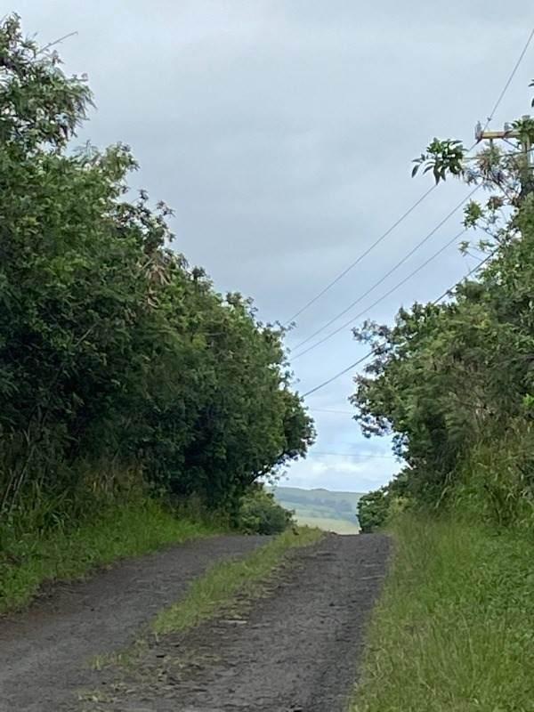 https://bt-photos.global.ssl.fastly.net/hawaii/orig_boomver_1_648402-2.jpg