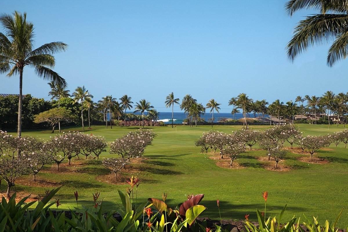 https://bt-photos.global.ssl.fastly.net/hawaii/orig_boomver_1_648465-2.jpg