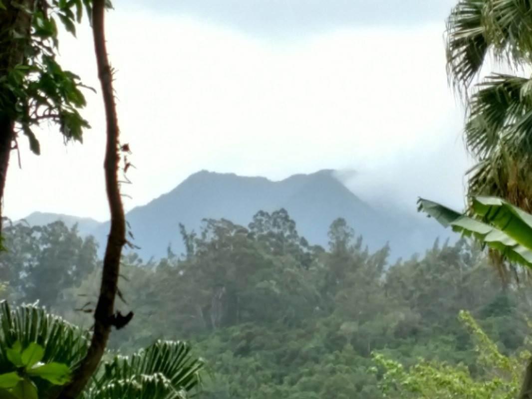 https://bt-photos.global.ssl.fastly.net/hawaii/orig_boomver_1_648584-2.jpg