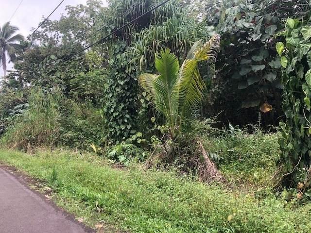 S Opae St, Pahoa, HI 96778 (MLS #648635) :: Aloha Kona Realty, Inc.