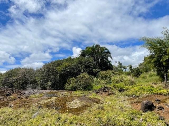 Address Not Published, Hilo, HI 96720 (MLS #648698) :: LUVA Real Estate
