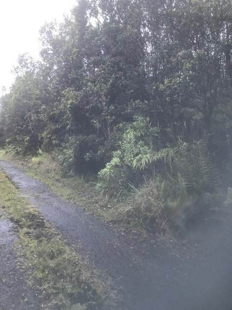 Huakai St, Volcano, HI 96785 (MLS #648749) :: Corcoran Pacific Properties