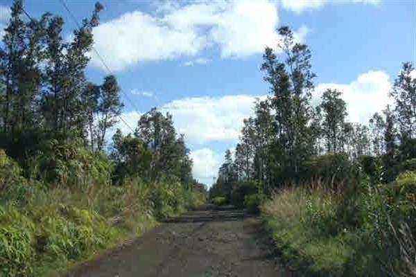 Ooaa Rd (Road 6), Mountain View, HI 96771 (MLS #648771) :: Aloha Kona Realty, Inc.