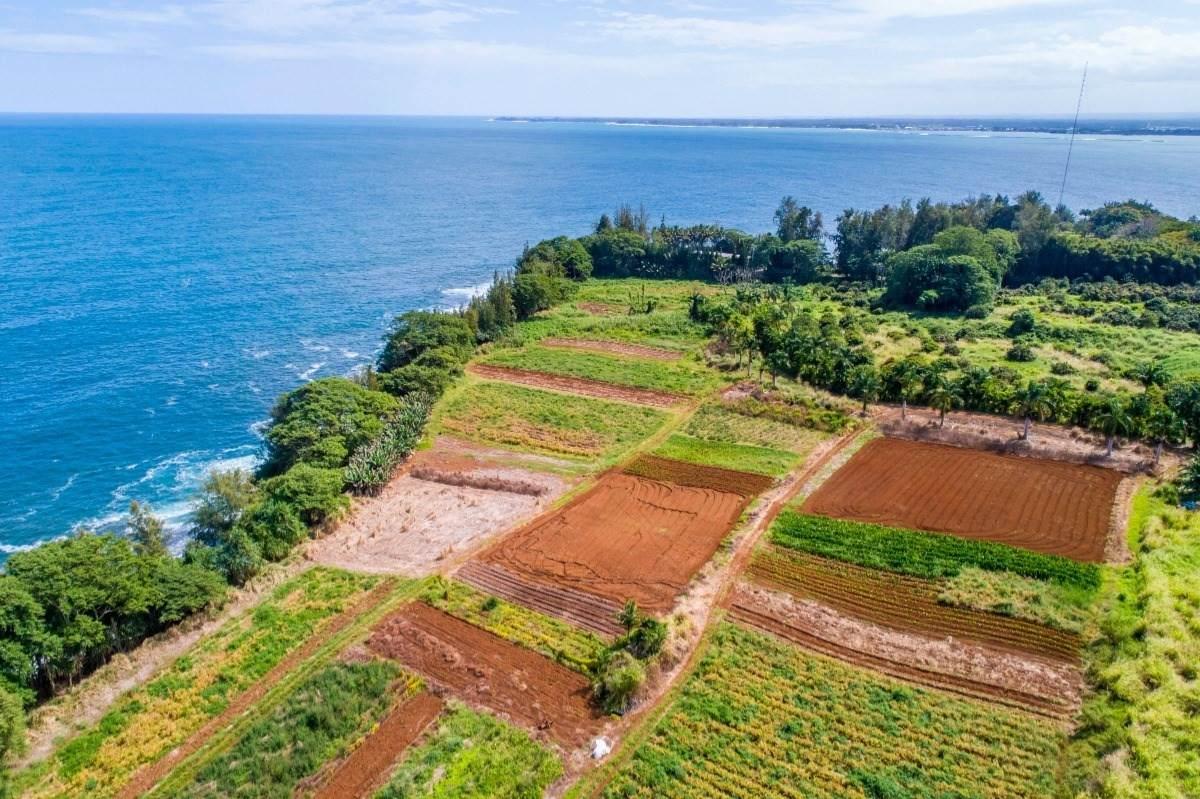 https://bt-photos.global.ssl.fastly.net/hawaii/orig_boomver_1_648861-2.jpg